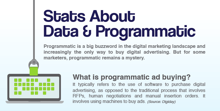 Stats About Data & Programmatic